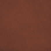 Orchard Traditions Dark Brown Solid Paper