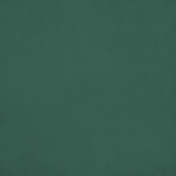 Orchard Traditions Dark Green Solid Paper