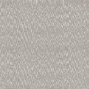 Inner Wild Tan Fur Paper 02