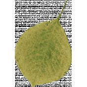 Old Farmhouse Green Leaf