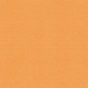 This Beautiful Life Orange Cardstock 01