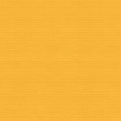 This Beautiful Life Orange Cardstock 02
