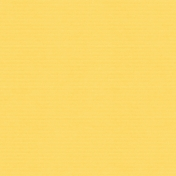 This Beautiful Life Yellow Cardstock 02