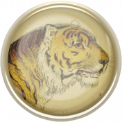 Into The Wild Tiger Flair