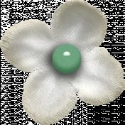 Into The Wild White Flower