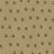 Into the Wild Paw Prints Paper