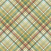 Into The Wild Plaid Paper 02