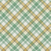 Into The Wild Plaid Paper 03