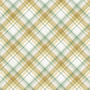 Into The Wild Plaid Paper 04