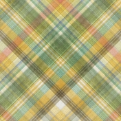 Into The Wild Plaid Paper 05
