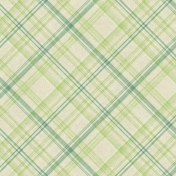 Into The Wild Plaid Paper 06