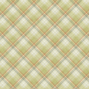 Into The Wild Plaid Paper 07