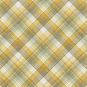 Into The Wild Plaid Paper 08