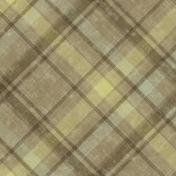 Into The Wild Plaid Paper 09