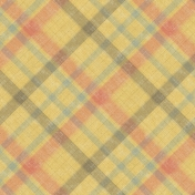 Into The Wild Plaid Paper 10