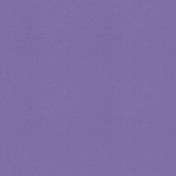 Into The Wild Solid Paper Purple