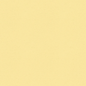 Into The Wild Solid Paper Yellow