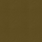 Into The Wild Solid Paper Brown 02