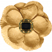 Taco Tuesday Beige Flower