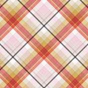 Positively Happy Plaid Paper 5