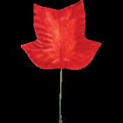 Retro Picnic Red Leaf