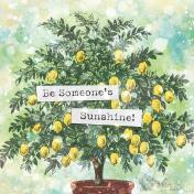 Peach Lemonade Someone's Journal Card 4x4
