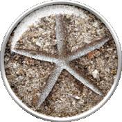 Nantucket Feeling {Sail Away} Starfish Flair