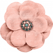 Cherish Peach Flower