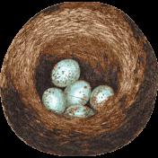 Cherish Nest