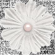 Tea in the Garden White Flower