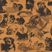 Furry Cuddles Animals Paper