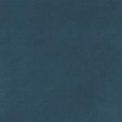 Heard the Buzz? Dark Blue Solid Paper