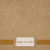 Mulled Cider Spice Life Journal Card 4x4