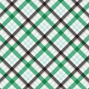 Healthy Measures Plaid Paper 12a