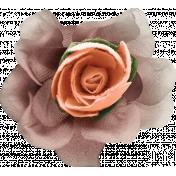 Rustic Wedding Peach & Purple Flower