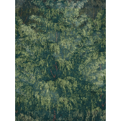 Rustic Wedding Journal Card Trees 3x4