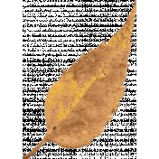 Nana's Kitchen Tan Leaf