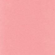 True Friend Pink Solid Paper 2