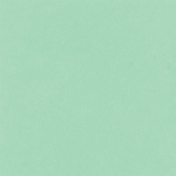 Backyard Summer Solid Paper Mint Green