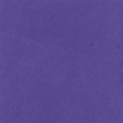 Backyard Summer Solid Paper Purple 2