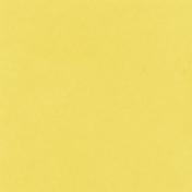 Backyard Summer Solid Paper Yellow