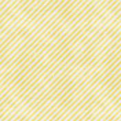 Backyard Summer Striped Paper 2