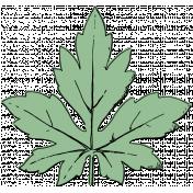 Botanical Sketches No. 1- Leaf 01