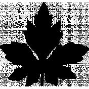 Botanical Sketches No. 1- Leaf 01 Shape