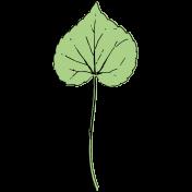 Botanical Sketches No. 1- Leaf 02