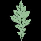 Botanical Sketches No. 1- Leaf 03