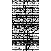 Botanical Sketches No. 1- Leaf 03 Sketch