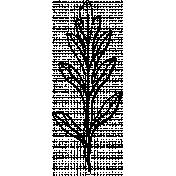 Botanical Sketches No. 1- Leaf 06 Sketch