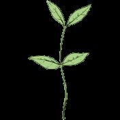 Botanical Sketches No. 1- Leaf 07
