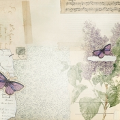 Butterflies And Flowers- Pattern Paper 1